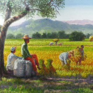 Code: 19296 Title: Rice Harvest Medium: Oil on Canvas Dimension: 24x18in